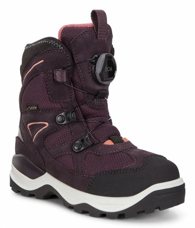 ECCO Snow Mountain BOA GORE-TEX® Sort/Fig
