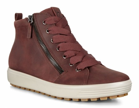 ECCO Soft 7 Tred D GORE-TEX®, Chocolate